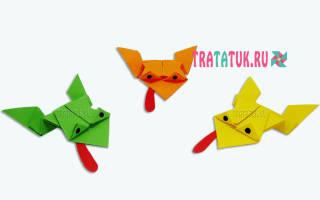 Лягушка оригами из бумаги: поделка для удачи и благополучия в семье