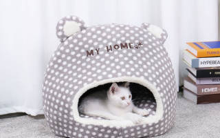 Лежак для кошек своими руками: учимся делать самое удобное место для питомца
