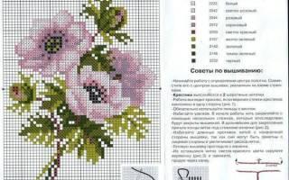 Вышивка крестом: схемы цветов и других ярких растений