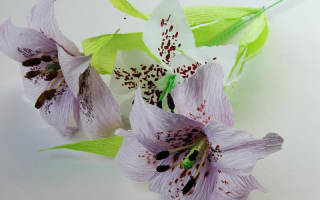 Лилии из гофрированной бумаги: сладкий подарок для самых любимых