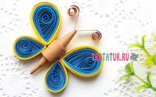 Схемы квиллинга для начинающих: красивые бабочки в популярной технике