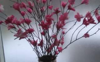 Цветочные деревья своими руками: цветущая сакура и акация