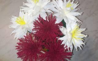 Цветы из креповой бумаги: схемы и описание легкой работы