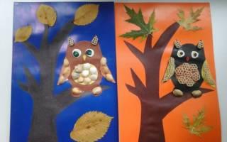 Аппликации из природных материалов: яркая бабочка и мудрая сова
