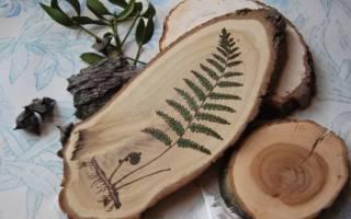 Выжигание по дереву: эскизы для всей творческой семьи