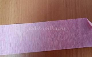 Мастер-класс по топиариям из гофрированной бумаги своими руками: декорируем дом просто и со вкусом