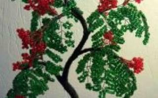 Рябина из бисера: схема с пошаговым описанием работы