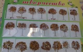 Аппликация из осенних листьев для детей: осваиваем древнюю технику