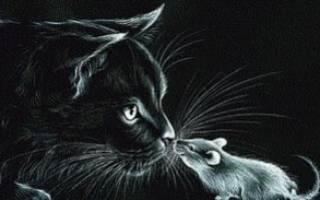 Вышивка на черной канве: основные плюсы и минусы