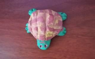 Черепаха из соленого теста: простые уроки лепки