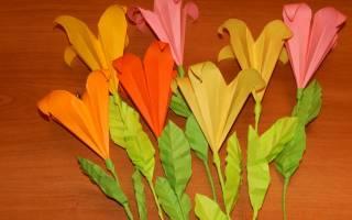 Цветы оригами из бумаги: нежная лилия и яркий тюльпан
