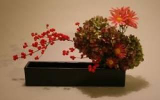 Икебана «осень» своими руками: увлекательные уроки для желающих