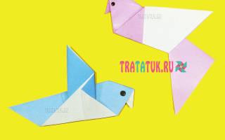 Как сделать голубя из бумаги оригами своими руками для всей семьи