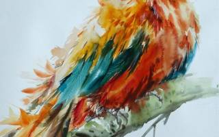 Мастер-класс по акварели: уроки для начинающих художников