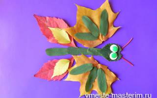 Аппликация «бабочка» из листьев и других интересных материалов