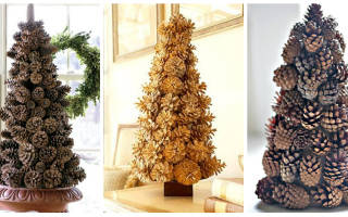 Как сделать елку из еловых шишек своими руками: создаем праздничное настроение
