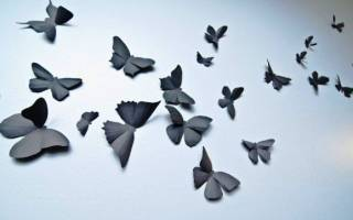 Как вырезать бабочку из бумаги: инструкция по быстрому способу