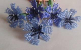 Василек из бисера: полевой цветок для украшения комнаты