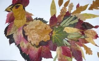 Икебана из листьев своими руками: поучительный мастер-класс для детей